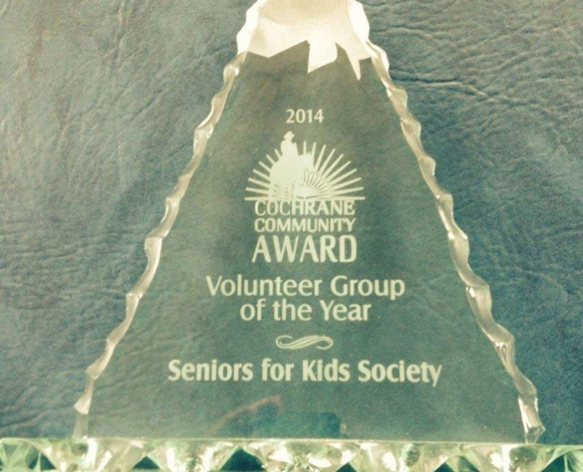 2014 Volunteer Group of the Year